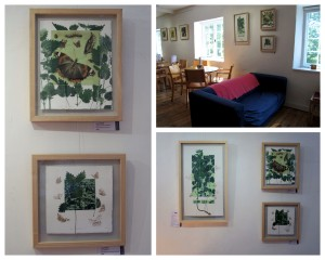 Butterflies & Nettles at Bovey Tracey