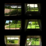 Windows at Killerton House. Lynn Bailey