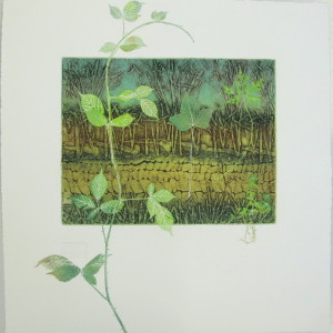 Freshly printed Hedgebank. Collagraph mono print. Lynn Bailey